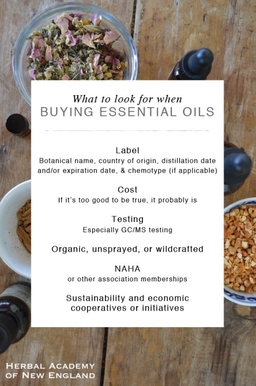 What-to-Look-for-When-Buying-Quality-Essential-Oils1