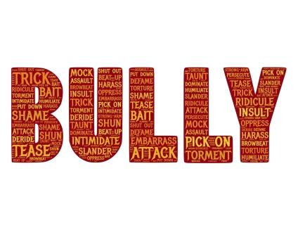 bully-655660_1920 copy